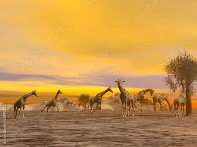 Obraz na płótnie Giraffes in the savannah - 3D render