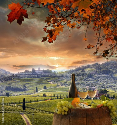Obraz na Szkle White wine with barell  in vineyard, Chianti, Tuscany, Italy