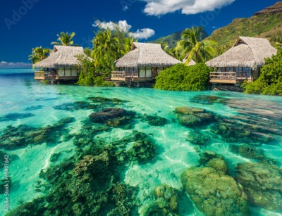 Fototapeta Beautiful above and underwater landscape of a tropical resort