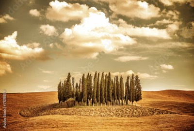 Fototapeta Beautiful autumn vinatge landscape
