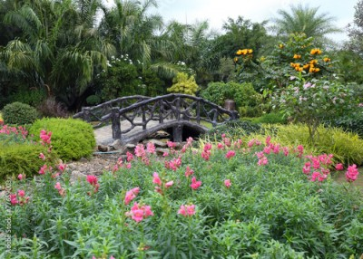 Fototapeta landscape of floral gardening with pathway and bridge in garden