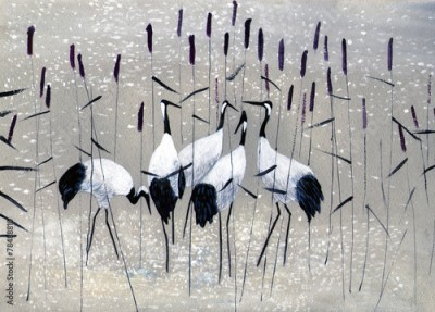 Plakat family of cranes