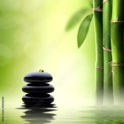 Obraz Zen concept. Black spa stones in green bamboo forest