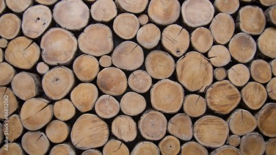 Fototapeta wallpaper wood log