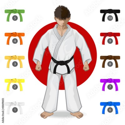 Obraz na płótnie KARATE Martial Art Belt Rank System