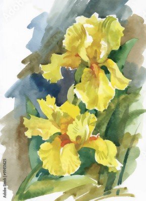 Obraz Watercolor flowers in classical style on a white background