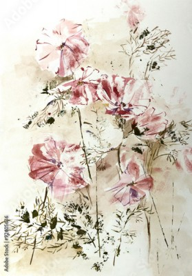 Obraz Stylized aquarelle drawing of Cosmos flowers