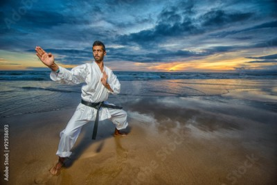 Fototapeta karate master in defense position