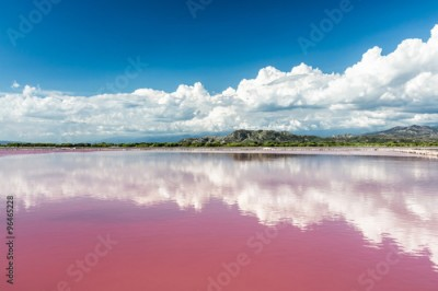 Plakat Landscape with Pink water salt lake in Dominican Republic