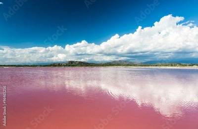 Plakat Pink water salt lake in Dominican Republic