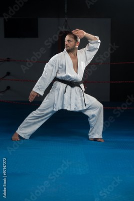 Fototapeta Taekwondo Fighter Pose