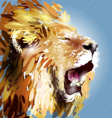 Fototapeta Vector illustration of a lion's head