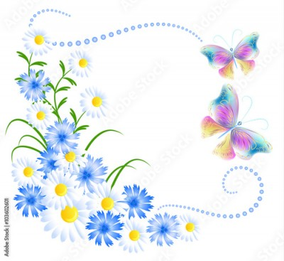 Obraz na płótnie Flowers ornament and butterflies isolated on white background
