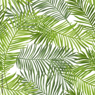 Fototapeta Seamless Pattern. Tropical Palm Leaves Background. Vector Background