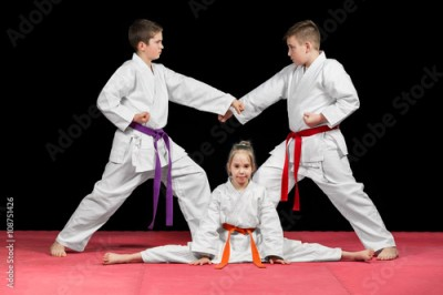 Obraz na płótnie Group kids Karate martial Arts