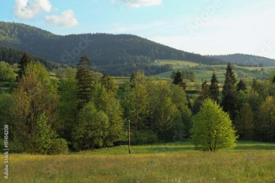 Fototapeta rual landscape in Gorce Mountains, Poland