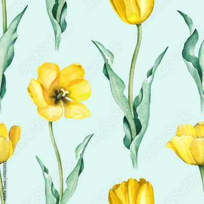 Fototapeta Tulip flowers. Watercolor seamless pattern