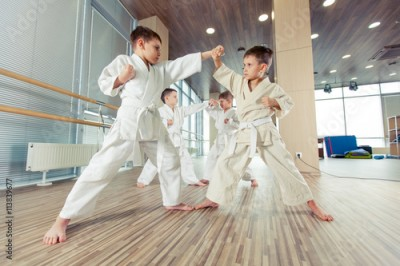 Obraz na płótnie young, beautiful, successful multi ethical kids in karate position