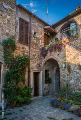 Fototapeta Houses and plants at sunset in Montemerano, Tuscany