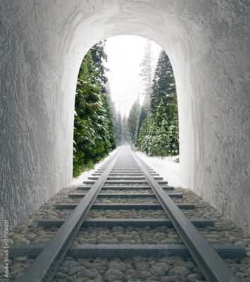 Fototapeta Railway tunnel with landscape view