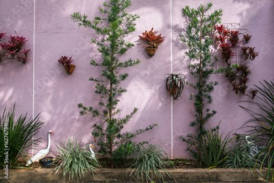Fototapeta Pink and Green Wall