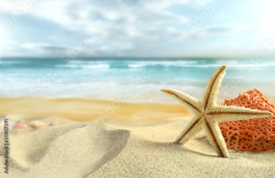 Obraz na Plexi Starfish on the Beach