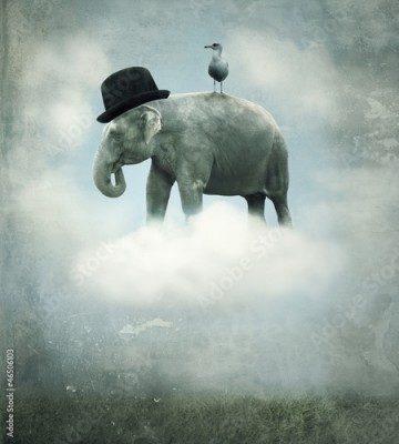 Fototapeta Fantasy elephant flying