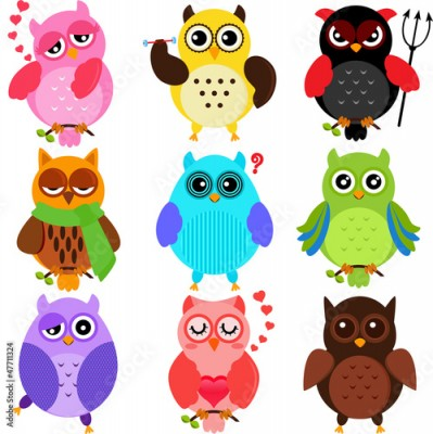 Fototapeta Set of Colorful Owls with different characters