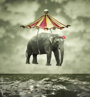 Fototapeta Fanciful elephant