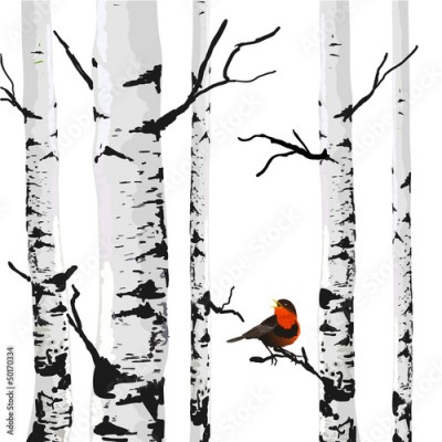 Fototapeta Bird of birches, vector drawing with editable elements.