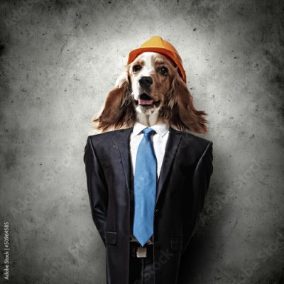 Obraz Funny portrait of a dog in a suit