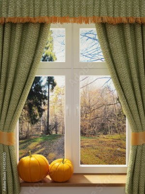 Fototapeta Window with pumpkins a beautiful view