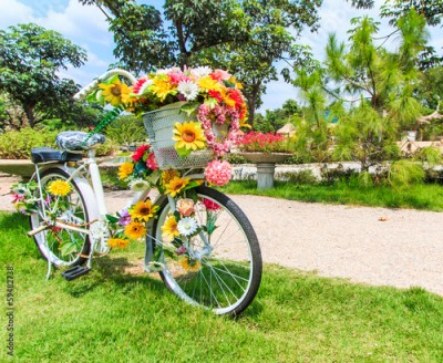 Obraz Flower on a bicycle as the decoration