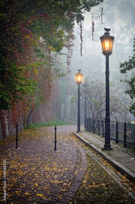 Panel Szklany The mysterious alleyway in foggy autumn time with lighted lamps