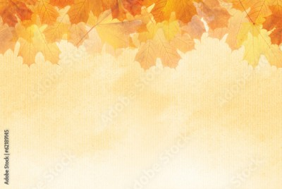Obraz Textured Autumn leaf background with room for copy space.