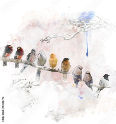 Obraz na płótnie Watercolor Image Of Perching Birds