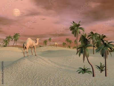 Obraz na płótnie Camels in the desert - 3D render