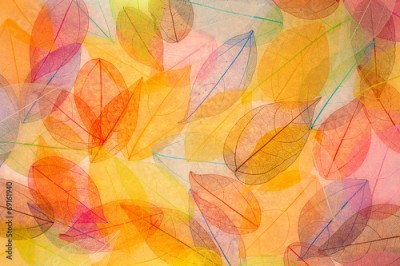 Obraz na Szkle Autumn background