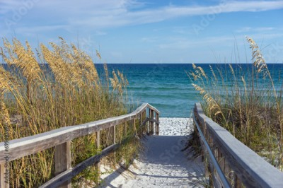 Obraz na Plexi Beach Boardwalk with Dunes and Sea Oats