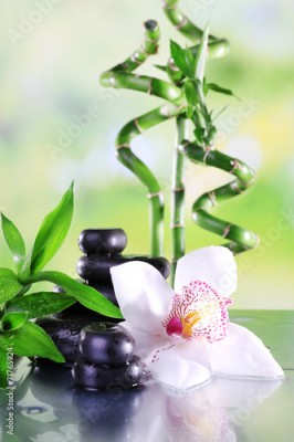 Obraz Spa stones, bamboo branches and white orchid