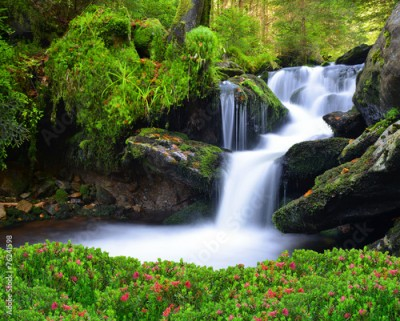 Obraz Waterfall in the national park Sumava-Czech Republic