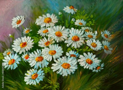 Obraz Oil Painting - abstract illustration of flowers, daisies, greens
