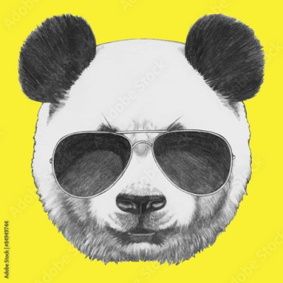 Fototapeta Hand drawn portrait of Panda with sunglasses. Vector isolated elements.