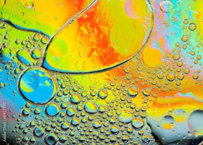 Fototapeta Background of colorful oil drops in water