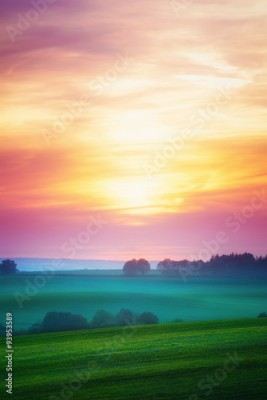 Fototapeta Landscape with sunset over cultivated field