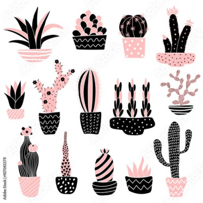 Panel Szklany pink cacti 2 in pots