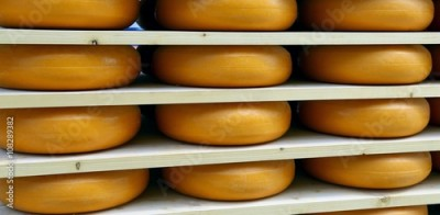 Obraz na Szkle emmental cheese during ripening in the dairy