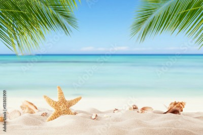 Panel Szklany Summer sandy beach with blur ocean on background