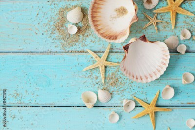 Fototapeta seashells frame background on wooden board