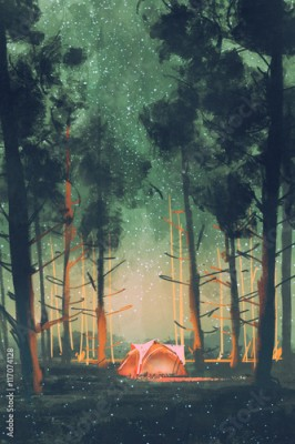 Plakat camping in forest at night with stars and fireflies,illustration,digital painting